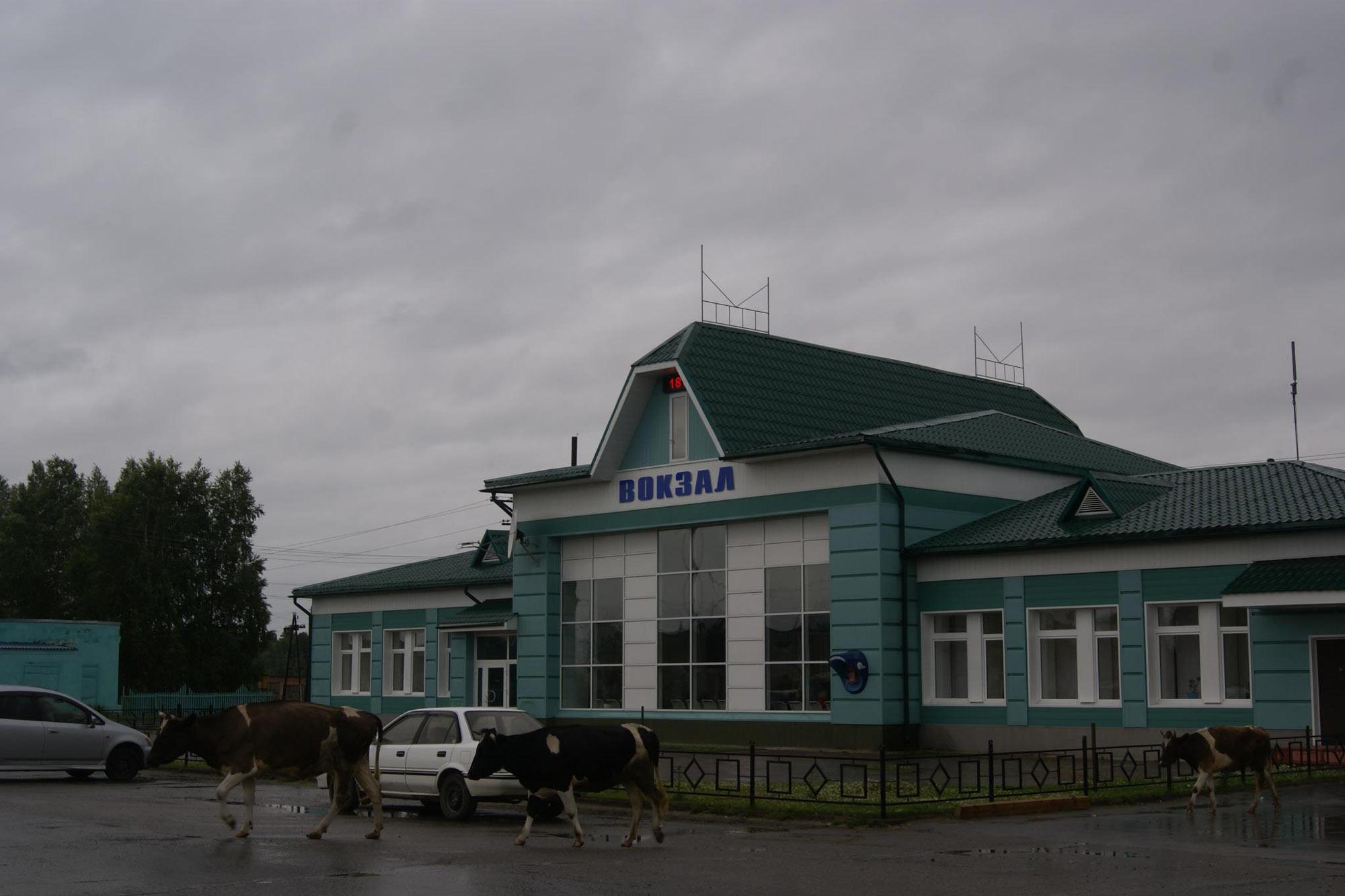 Kelionės Sibiras