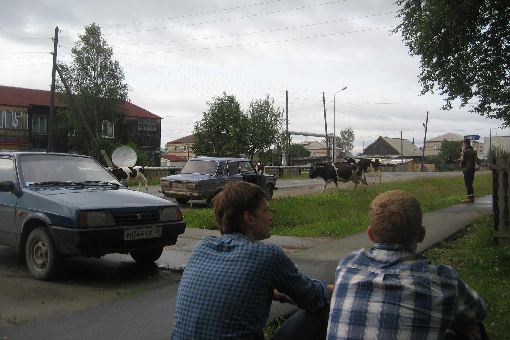Misija Sibiras 2011
